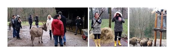 Azubis mit Geschäftsführung und Ausbilder der Firma Across Barriers GmbH unterstützen den Saarbrü-cker Wildpark